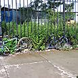 Duas bicicletas: DUMBO