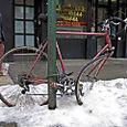 Snow Bike 2007