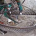 Clam Wheel