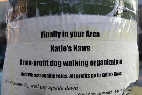 Katies_kaws