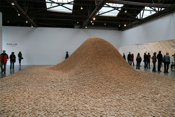 what about the plastic animals?: Maya Lin's