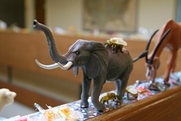 Elephant_bee