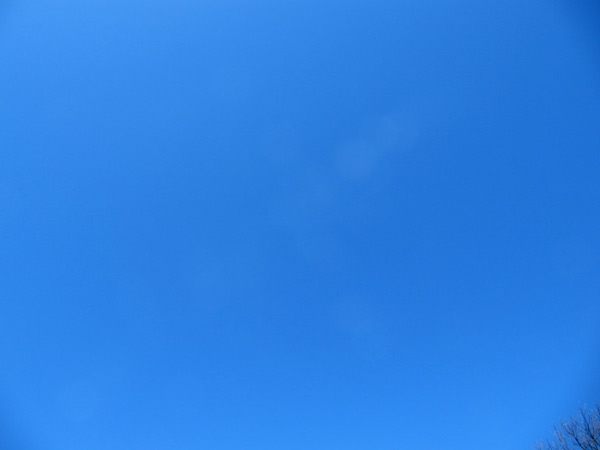 Bluesky16march