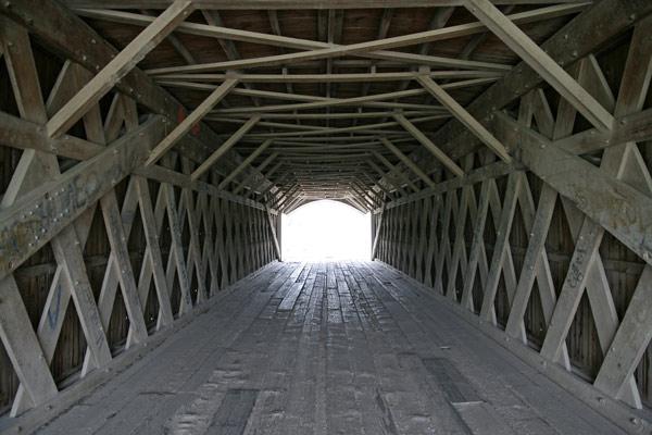 Bridge_hog_int