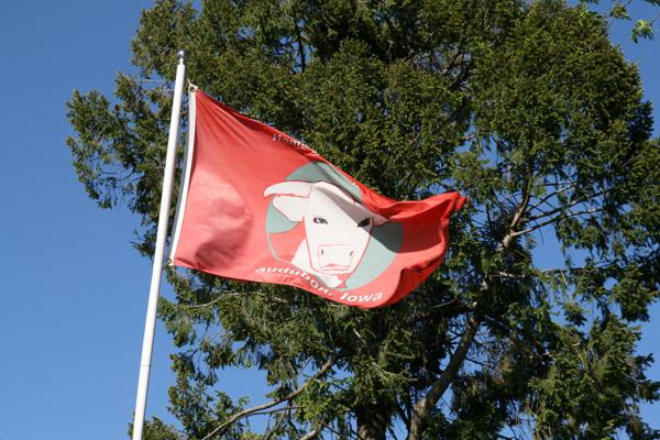 Albert_flag