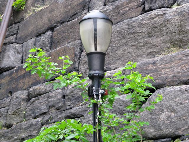 Lamp05222011