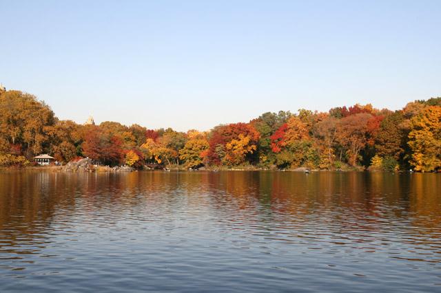 Lakefall