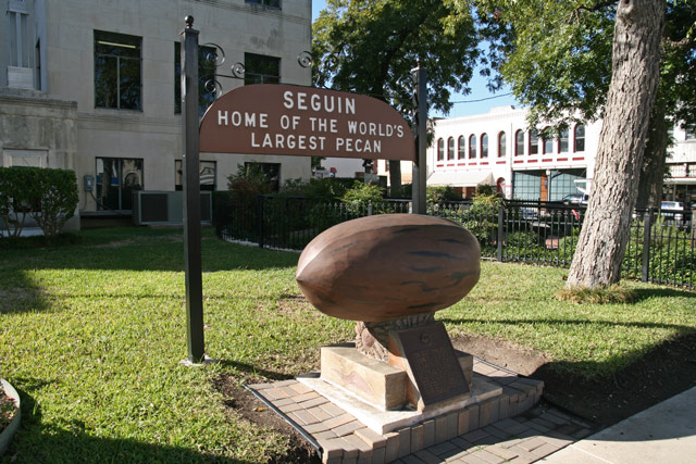 Sequin_pecan_sign