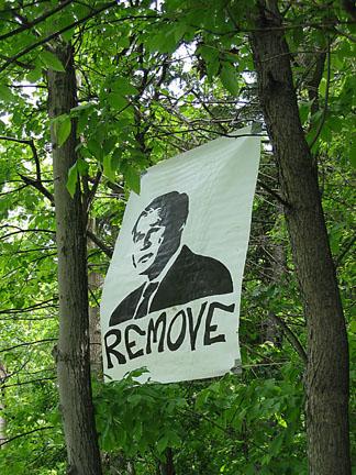 remove bush