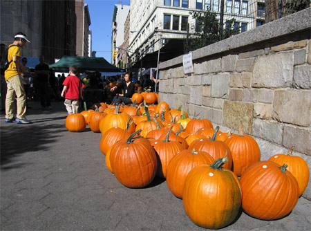 Medium_pumpkins