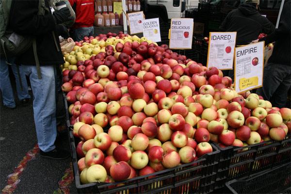 Apples_122907