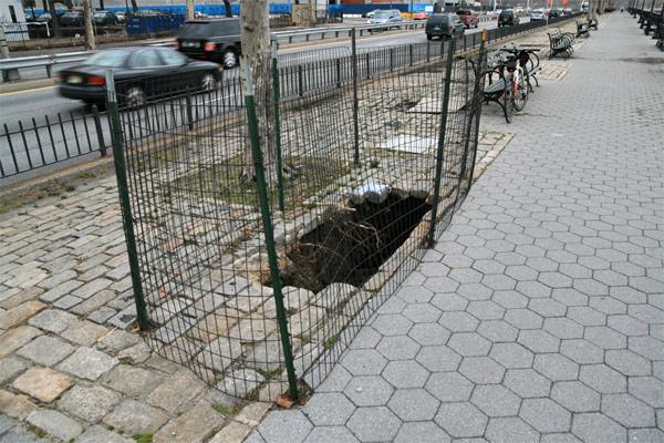 Bikepath_hole2