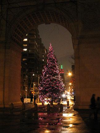 Arch_tree1