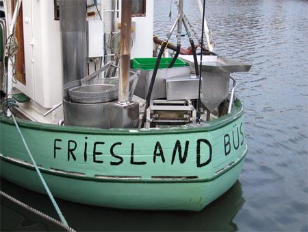 Busum_friesland
