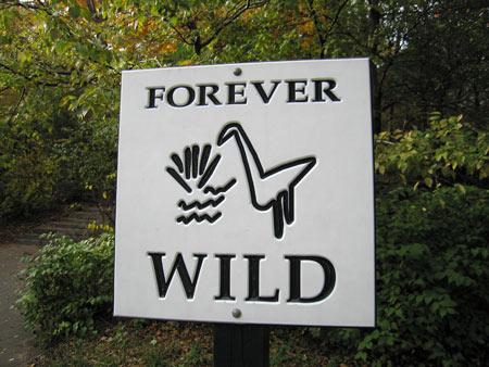 Forever_wild