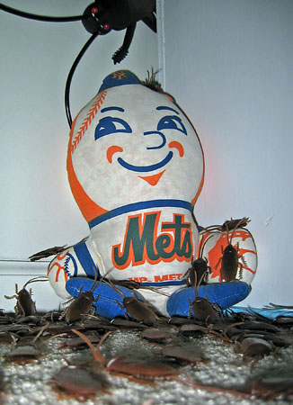 Mr. Met and roaches