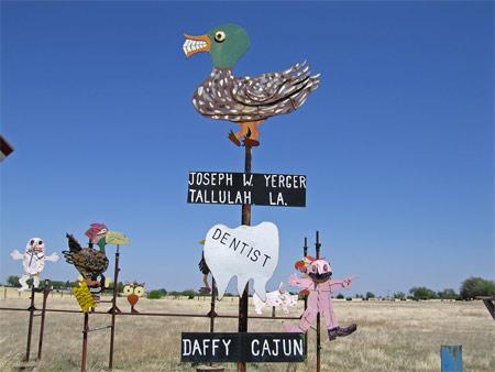 Mt_daffy_cajun