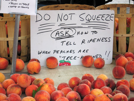 don't squeeze Peaches