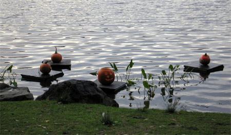 Pumpkins_hmeer_03