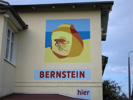 Sellin_bernstein
