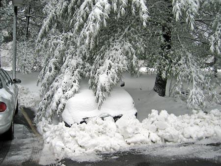 Snow_03241