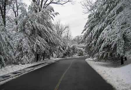 Snow_03242