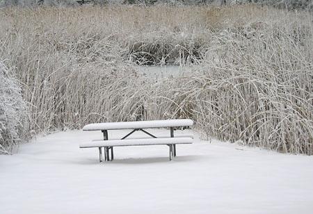 Snow_03243_1